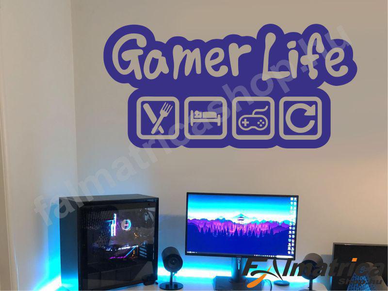41. Gamer Life falmatrica