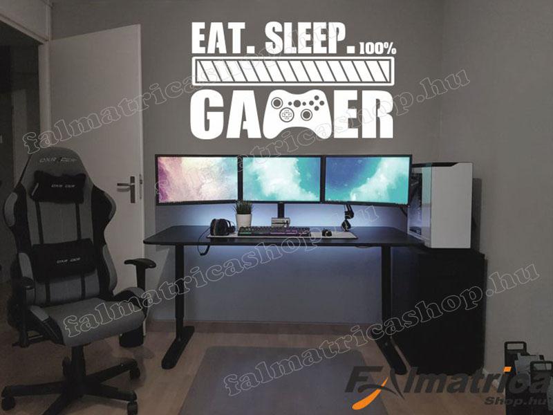 100% Gamer falmatrica