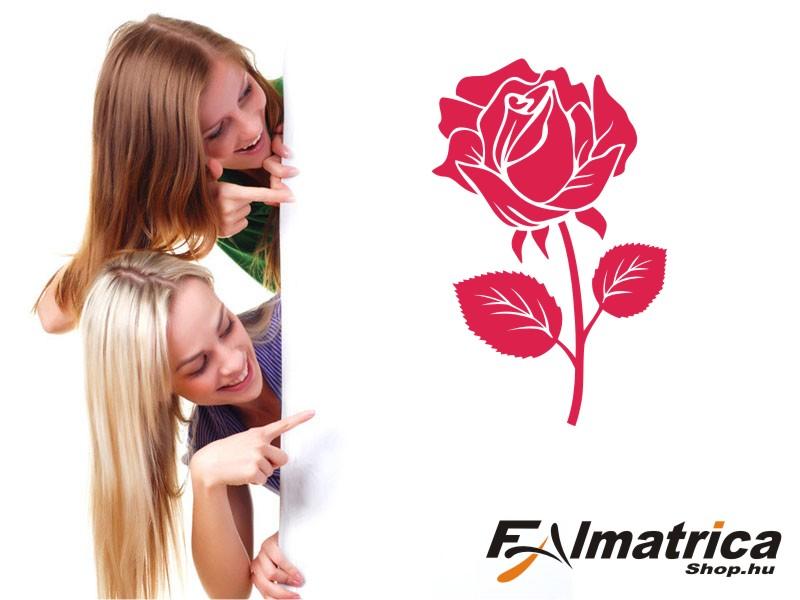 31. Rózsa falmatrica