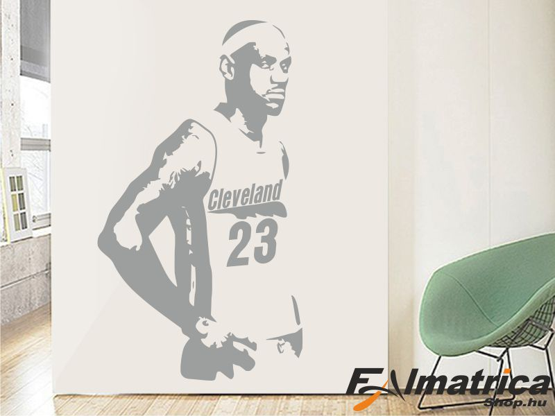101. Lebron James NBA kosaras - kosárlabda falmatrica