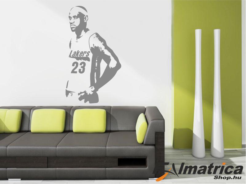 103. Lebron James NBA kosaras - kosárlabda falmatrica