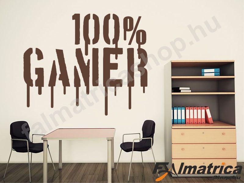 27. 100% gamer falmatrica