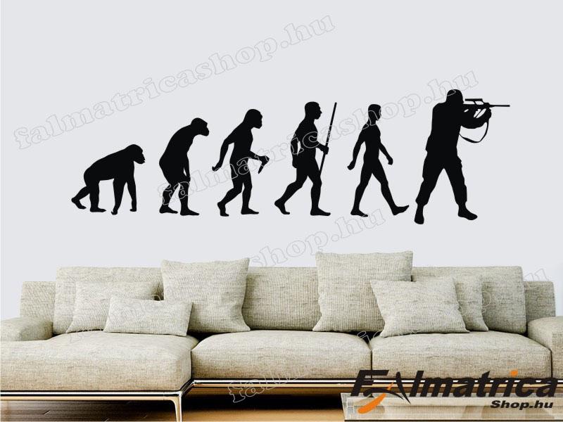 09. Katona evolúció falmatrica