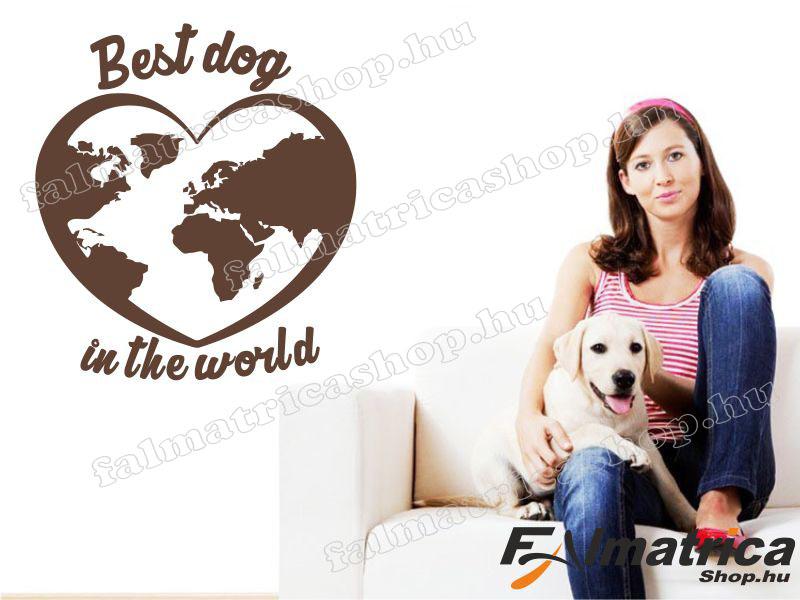 35. A legjobb kutya falmatrica
