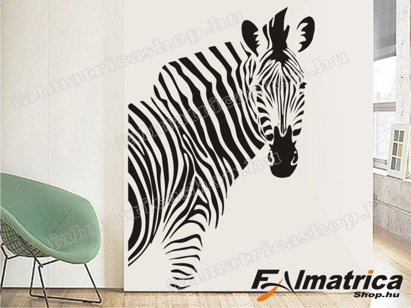 10. Zebra falmatrica
