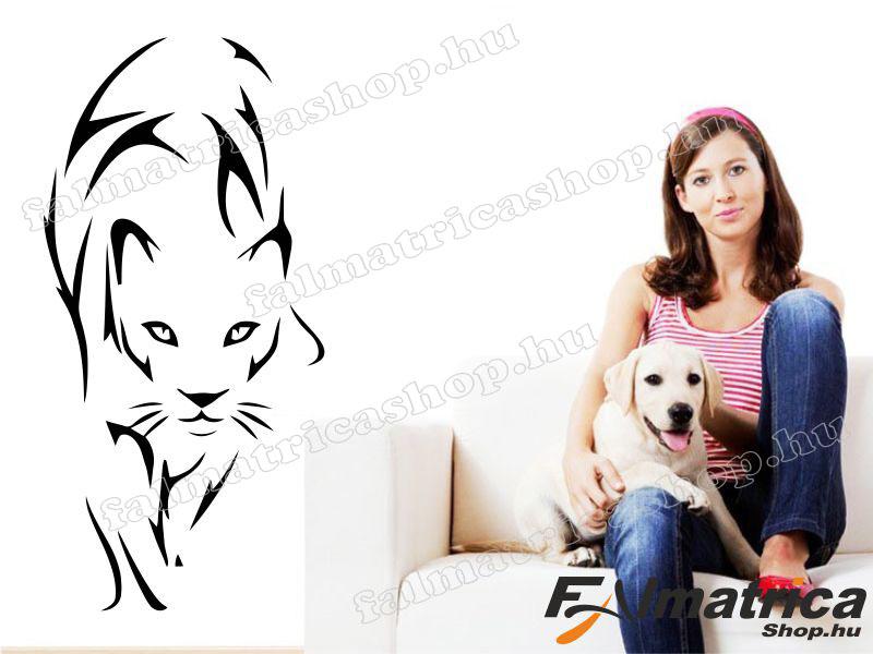 67. Puma falmatrica