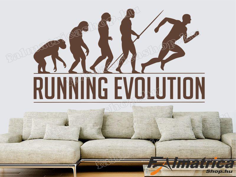 63. Evolúció falmatrica