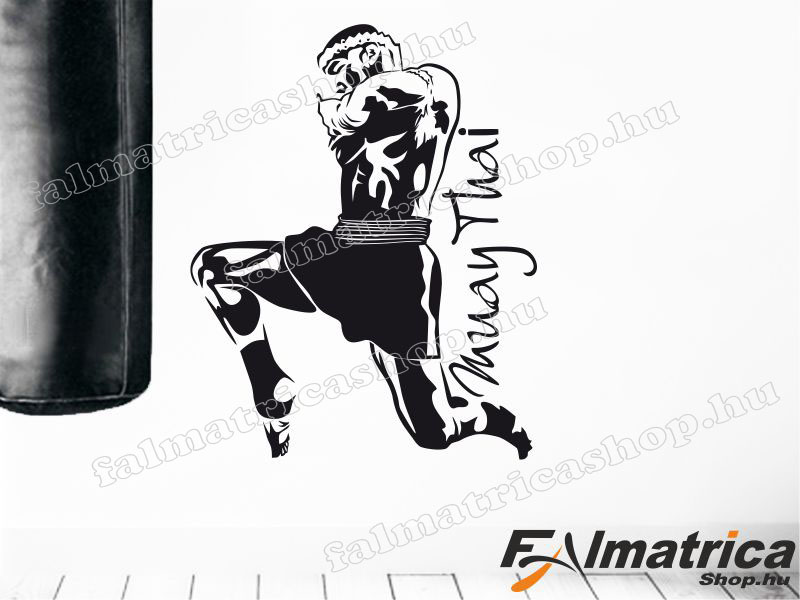 81. Muay Thai - thai box falmatrica