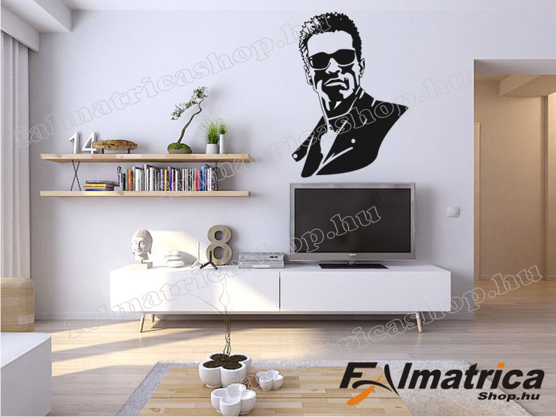 24. Arnold Schwarzenegger falmatrica