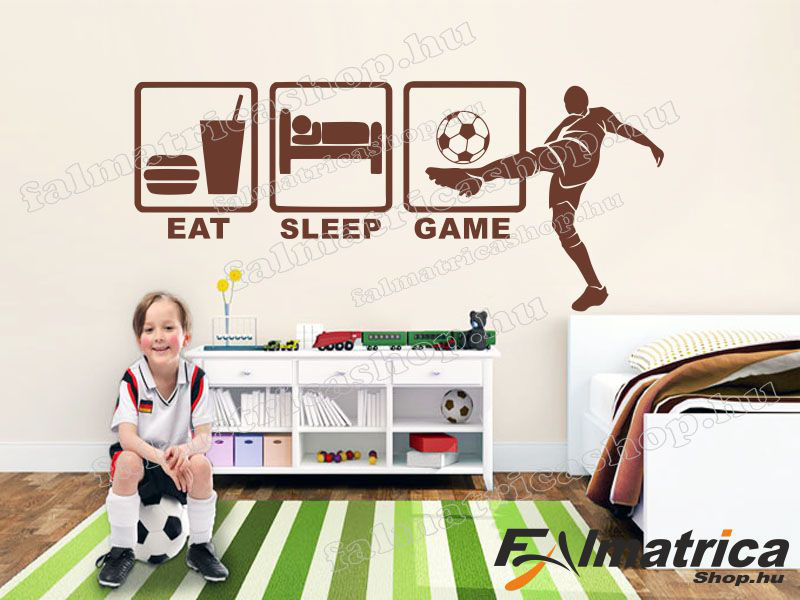67. Eat, sleep, game focis falmatrica