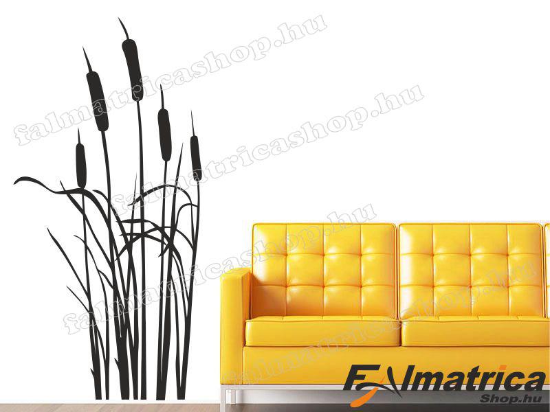 68. Bambusz falmatrica